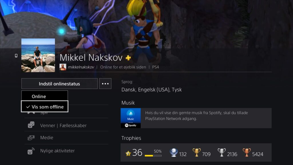 Offline Playstation Profil